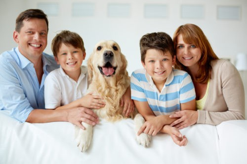 How to Decide if Pet Behavior Counseling is Right for Your Family Pet
